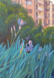 Eric Soll - Irises in Pamplona
