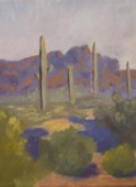 Eric Soll - Arizona Superstition Mountains